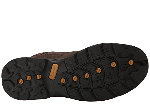 Brown Chocorua Boot Dark Timberland Trail Women's qZx6wqB8