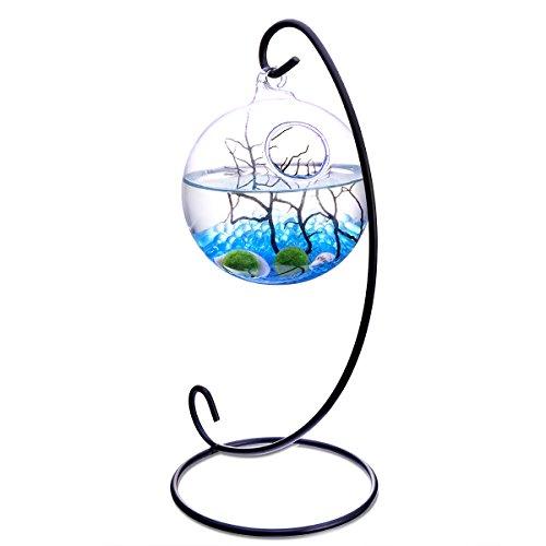 NewDreamWorld Table Aquarium Kit - 2 x 10mm Aquatic Livin...