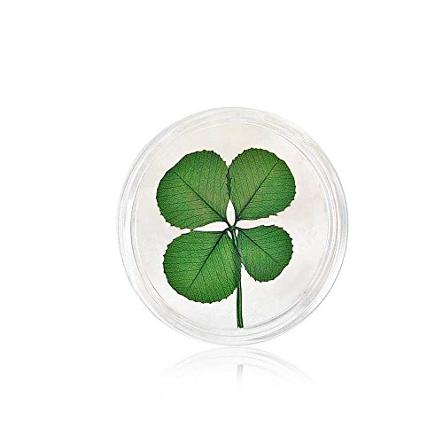 Real Four Leaf Clover Good Luck Pocket Token - Good Luck Token