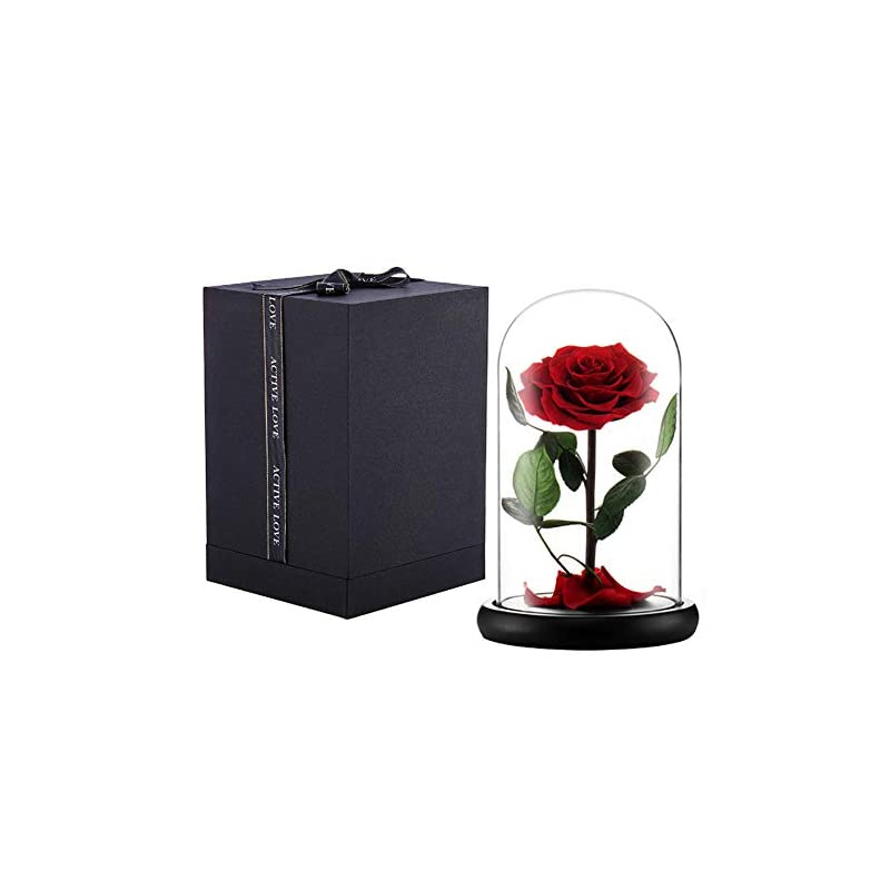 silk flower arrangements puto preserved real rose eternal rose in glass dome gift for her thanksgiving christmas valentine's day birthday mother's day (red, large)