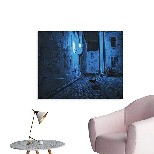 Anzhutwelve Urban Wallpaper Black Cat Crossing Deserted Street at Night Mysterious Old European Town Alley Wall Poster Blue Black White W28 xL20