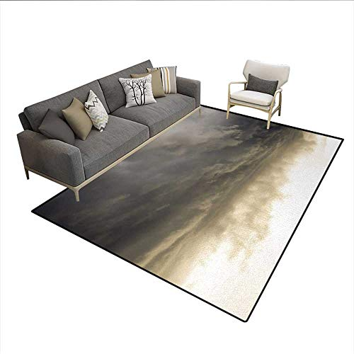 Liquid Wizard Deodorizer (Rug,Heavy Storm Clouds in Dark Sky Hurricane Weather Cloudscape Mass of Liquid Droplets Image,Area Carpet,GreySize:5'x6')