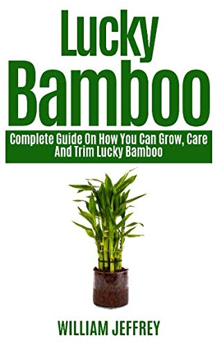 LUCKY BAMBOO: Complete Guide on How You Can Grow, Care and Trim Lucky Bamboo (Bamboo Plant)