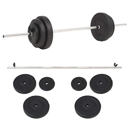 Festnight Set de Pesas Barras musculacion Pesas 30 kg: Amazon.es ...