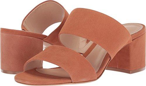SCHUTZ Women's RASHNE Heeled Sandal, Toasted nut, 6 M US