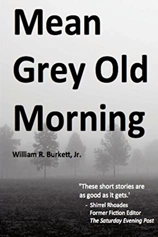 book cover of Mean Grey Old Morning