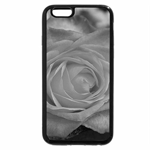 iPhone 6S Plus Case, iPhone 6 Plus Case (Black & White) - Beautiful Rose Bloom