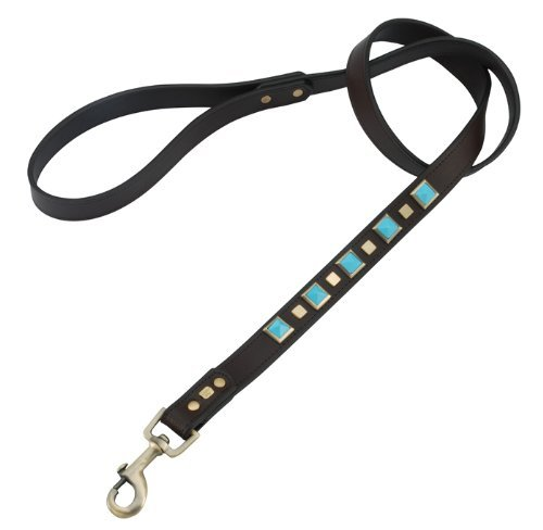 Turquoise Rock & Roll Leather Dog Leash - Large