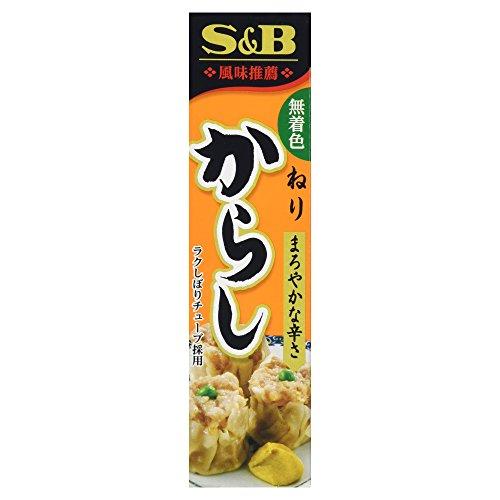 S&B Japanese Wasabi Paste (Oroshi Nama Wasabi) in Plastic Tube, 1.51oz