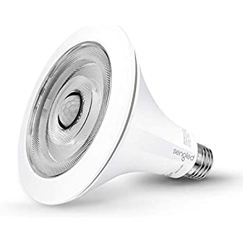 Sengled Smartsense Motion Sensor Light Sensor Bulb Outdoor