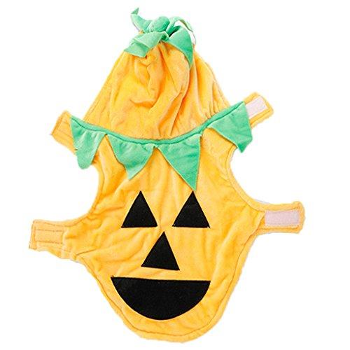 Pet Dog Clothes Halloween Pumpkin Costumes Cat Puppy Apparel Hoodie Halloween Dress-up Costume S -