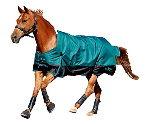 (Saxon 1200D Ripstop Standard Neck Lite 2 Tone Turnout Blanket with Gussets, Hunter/Black, Size)
