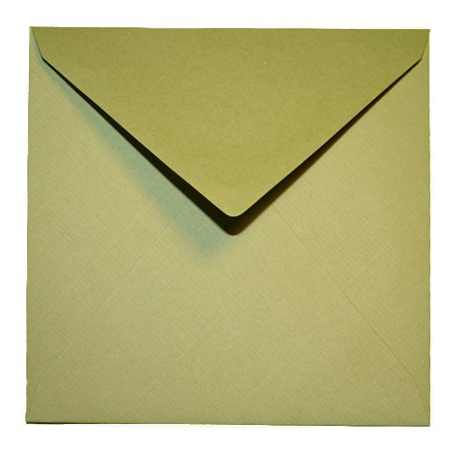 /Triangolare Con Fodera Interna//chiusura 75/Buste quadrate/ 100/G//M/² /Oliva Verde 146/X 146/mm 14,6/x 14,6/cm/ feuchtkl ebend//Grammatura