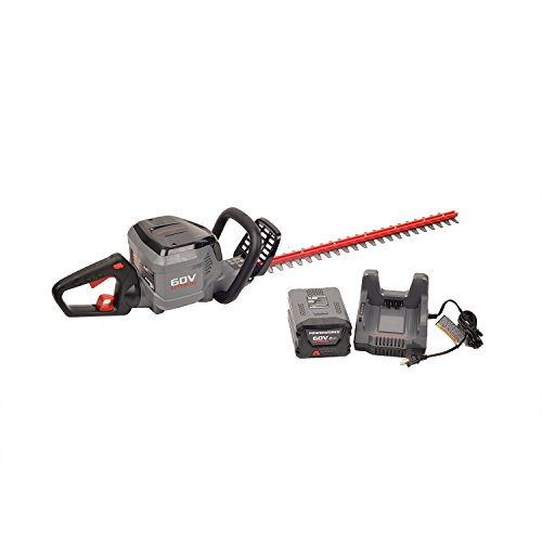 Powerworks 60V 24-inch Brushed Hedge Trimmer, 2Ah Battery and Charger Included HT60B211PW
