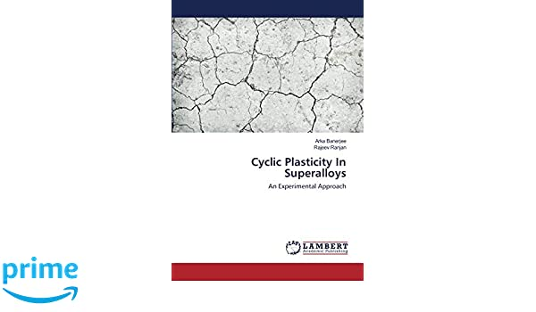Cyclic Plasticity In Superalloys: An Experimental Approach