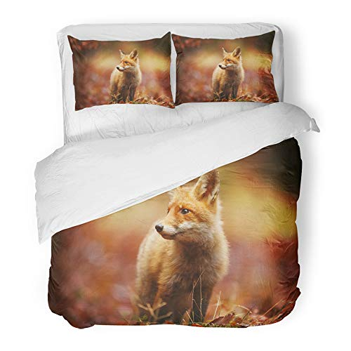 Emvency Decor Duvet Cover Set Full/Queen Size Cautious Fox Stopped at The Edge of Forest in Autumn Leaves 3 Piece Brushed Microfiber Fabric Print Bedding Set Cover ()