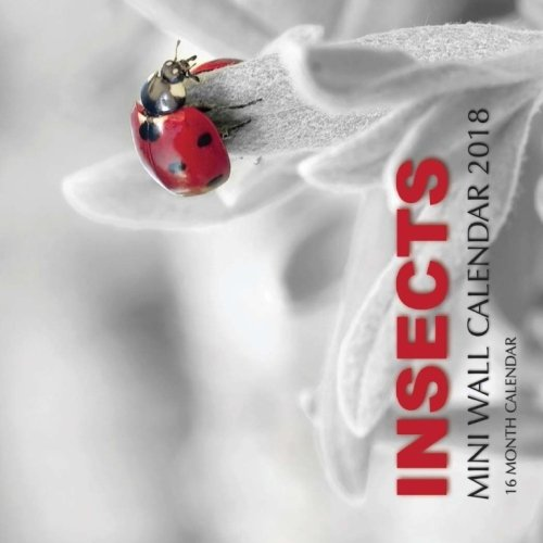 Insects Mini Wall Calendar 2018: 16 Month Calendar pdf epub
