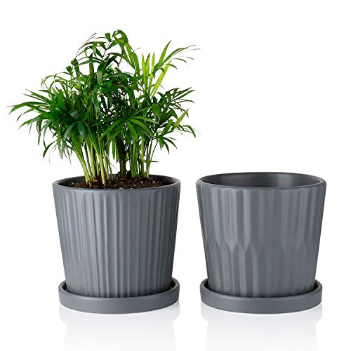- Greenaholics Medium Plant Pots - 6 Inch Grey Cylinder Ceramic Planters with Attached Saucers, Two Line Grain, Great House and Office Decor, Set of 2