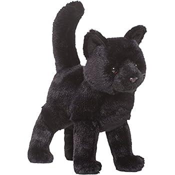 Midnight Black Cat