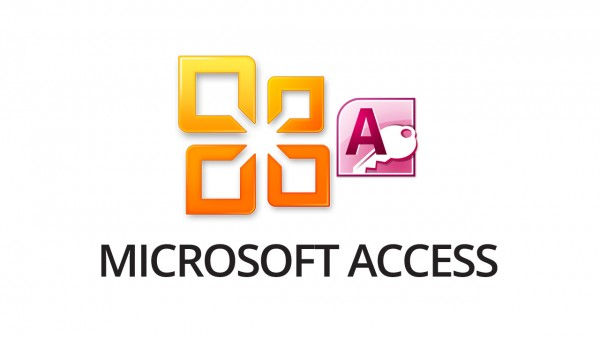 Microsoft Access 2010 Online Training Course [Online Code] by The Training Portal