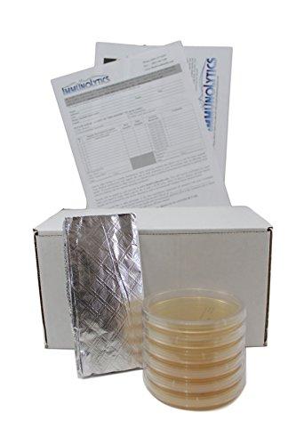 ImmunoLytics Mold Test Kit (6 Rooms/Plates)