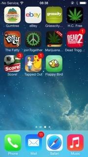 Iphone-5-Sprint-Rare-Flappy-Birds
