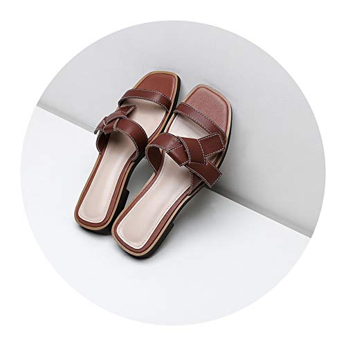 Alfalfa Plant Summer Shoes Woman Flat Slippers Flips Flops Low Heeled Comfort Casual Shoes Ladies Sandals,Brown,8