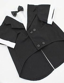 Uso abrigos para perros negro/gris primavera/otoño boda XS/S/M