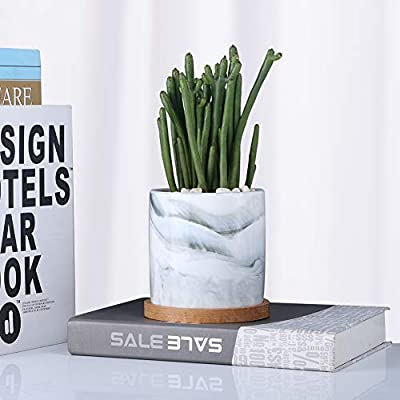 SQOWL 4 inch Marble Ceramic Succulent Planter Pot Indoor Modern Cactus Herb Flower Planters with Bamboo Tray Set of 3 : Garden & Outdoor