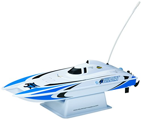 Aquacraft Models RTR Remote Control RC Boat: Mini Wildcat Electric Catamaran with 2.4GHz Radio, Servo, 2 in 1 Receiver / ESC,  Dual Motors, 7.2V 1100mAh NiMH Battery, and Charger (Blue) - Wildcats Dual Stand