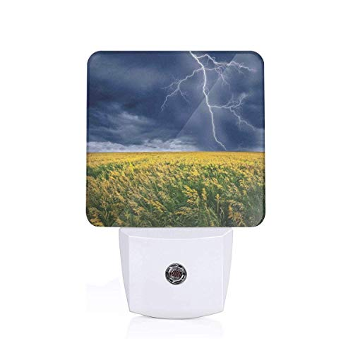 Colorful Plug in Night,Thunder Bolt Above The Seasonal Field Electric Vibes Mother Nature Theme Image,Auto Sensor LED Dusk to Dawn Night Light Plug in Indoor for Childs Adults