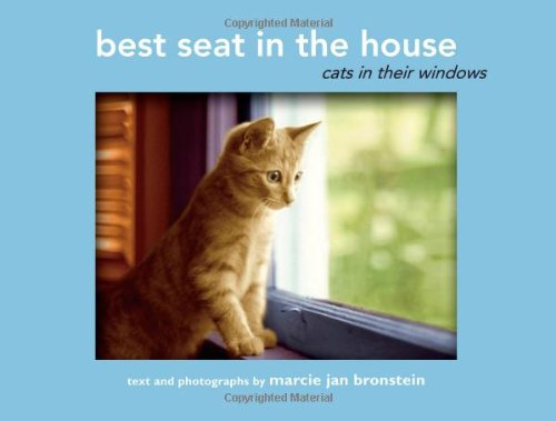 Best Seat in the House: Cats in Their Windows
