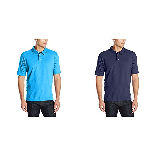 Hanes Blue Blend Shirt - Hanes 2 Pack X-Temp Performance Polo Shirt, Neon Blue Heather/Navy, X-Large/X-Large