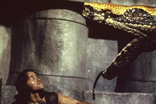 Arnold Schwarzenegger in Conan The Barbarian Battles Giant Snake 24x18 Poster
