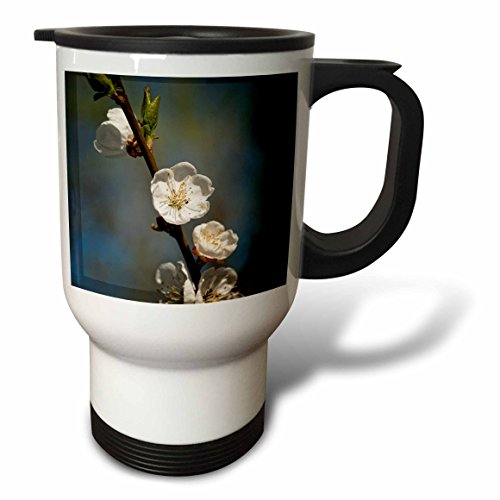 3dRose Alexis Photography - Flowers Sakura Beautiful - Twig of white Japanese apricot flowers, dark grey, blue background - 14oz Stainless Steel Travel Mug (tm_286673_1) by 3dRose