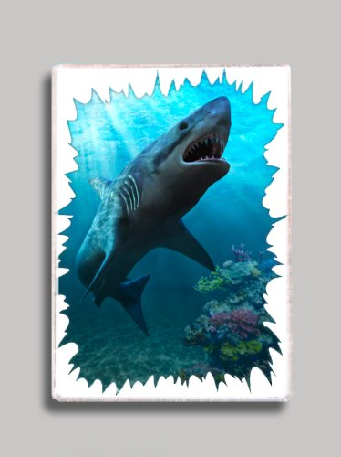 - Great White Shark Refrigerator Magnet