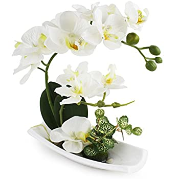 LIVILAN Artificial Orchids Arrangements with White Ceramic Vase for Decoration Silk Fake Flowers for Table Centerpiece Home Decor Office Wedding Vivid Lifelike
