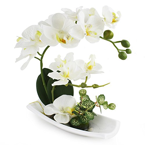 LIVILAN Artificial Orchid Flower Arrangements with White Porcelain Vase, Artificial Bonsai Centerpiece Decoration, Plastic Flowers, Realistic Lifelike 10.6 x 1.96 x 9.8 Inch, Milk White -