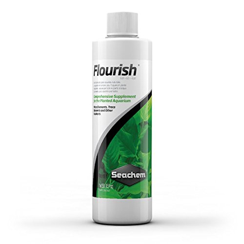 Top aquarium fertilizer for plants dry