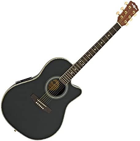 Roundback guitarra acústica