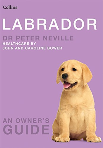 Download Labrador (Collins Dog Owner's Guides) ebook