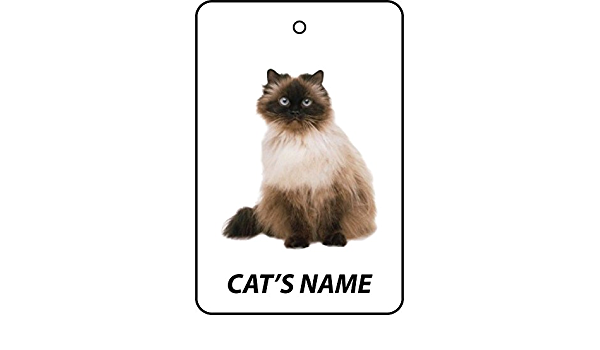 Cat Pendant Himalayan Cat Personalized Gift Gift Ideas Personalized Personalized Gift Cat Lover Cat Jewelry Cat Gift