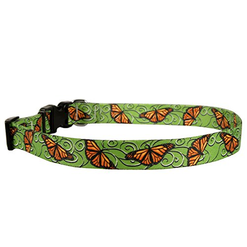 Yellow Dog Design Monarch Swirl Dog Collar, Teacup-3/8