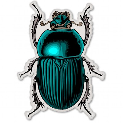 Beetle Bug Insect Nature Science Vinyl Sticker - Car Window Bumper Laptop - SELECT SIZE