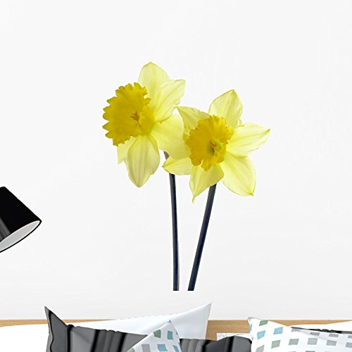 Wallmonkeys Yellow Spring Daffodils Wall Decal by Peel and Stick Graphic (24 in H x 18 in W) WM254817