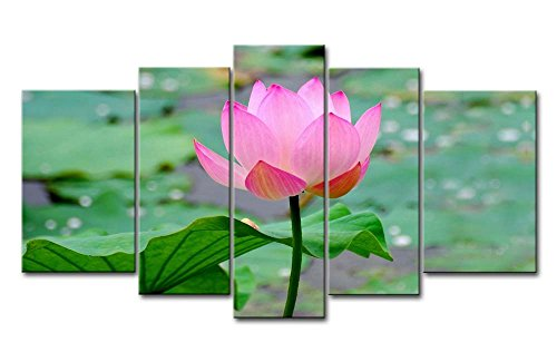 So Crazy Art - Canvas Print Wall Art Painting Home Lotus