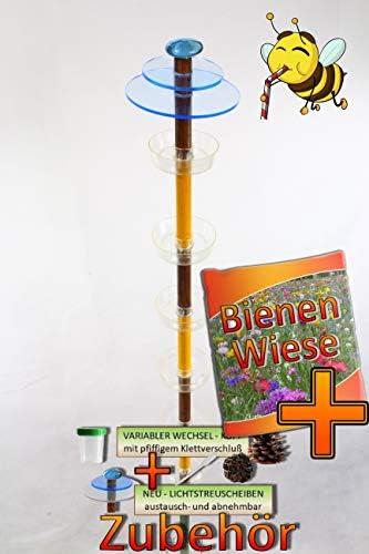 ÖLBAUM Insekten- & Bienentränke braun-Hellbraun-B Gartendeko MASSIVHOLZ Sonnenfänger als funktionale Bienentränke,pink +Bienenwiese-Samen + 2X Lichtscheibe BLAU Streulicht für