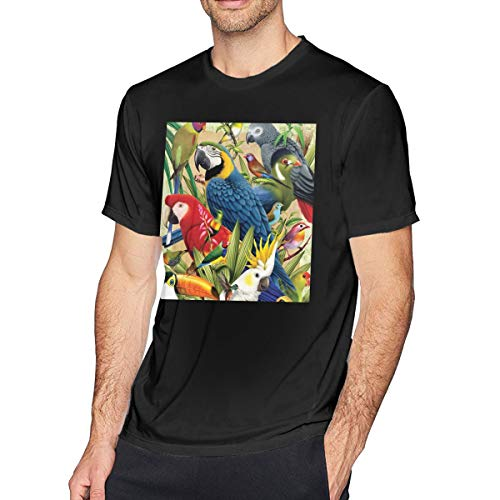 - Men's Big Tall T-Shirt Printed Parrot Crewneck Athletic Short Sleeve for Youth Adult S-6XL Black