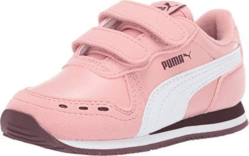 PUMA Baby Cabana Racer Velcro Sneaker, Bridal Rose White-Vineyard Wine, 10 M US Toddler