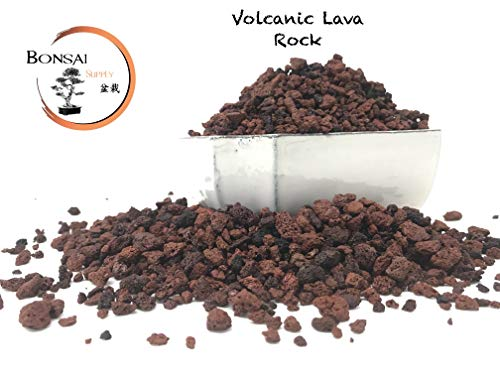 (Lava Rock, The Bonsai Supply - Red/Maroon 1/4 inch Horticultural Lava Rock Soil Additive for Cacti, Succulents, Plants - No Dyes or Chemicals - 100% Pure Volcanic Rock (3 Pound Bag) Top Dressing)